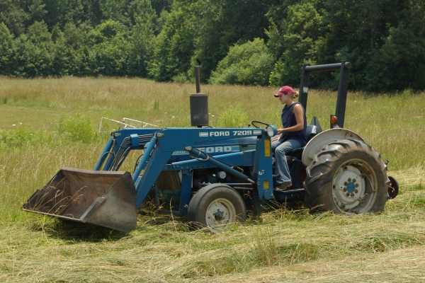 A summer job for oldest daughter. She loved it {farm girl}