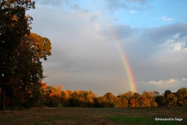 Be Thou the Rainbow